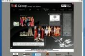 Web toegroup.eu